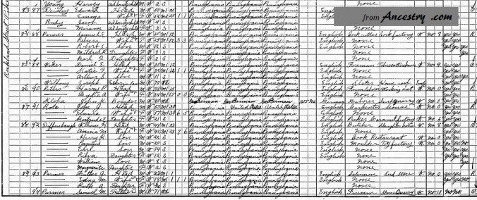 1910 Census Samuel M Parmer