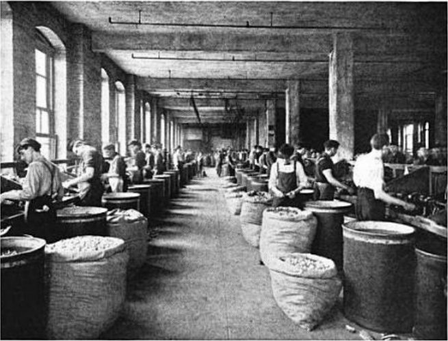 Cork_cutting_at_Armstrong_Cork_Company